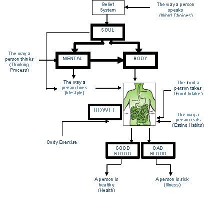Hubungan Antara Roh, Minda dan Badan