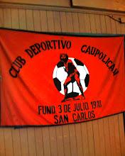 bandera de caupolican