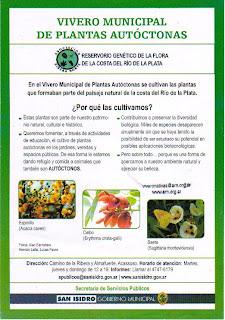Con plantas nativas vuelven las mariposas a tu barrio for Vivero plantas nativas