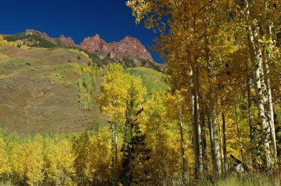 fall colors in the mountains near Aspen, Colorado