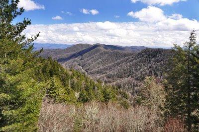 North Carolina from Newfound Gap
