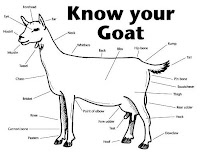 Know Your Goat