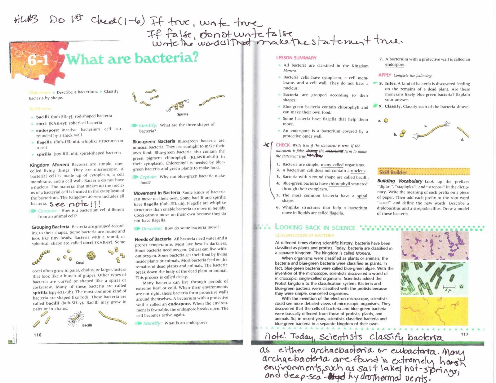 Fungi Coloring Worksheet Quizlet - Breadandhearth - photo#41