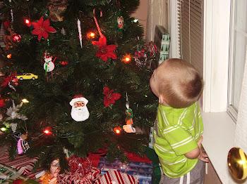 Shawn's admiring his tree!