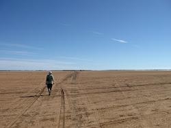 Derby Mud Flats
