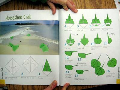 ethan origami how to make a horseshoe crab