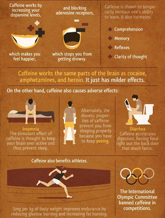 Fun arena 15 caffeine facts