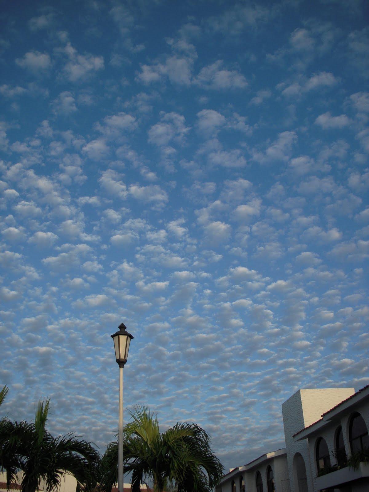 Flocked Wallpaper Sky