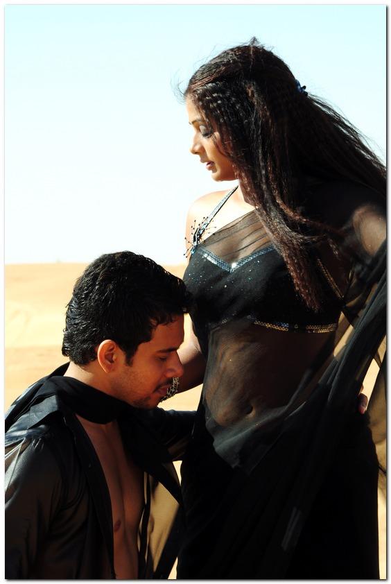 Actress Priyamani Black Saree Photos