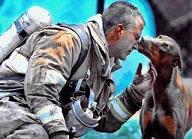 El beso /The Kiss ... La acababa de salvar de un incendio en su casa , rescatándola y llevándola en brazos de la casa hasta el jardín, y siguió luchando contra el fuego. Estaba preñada.Era una doberman. Cuando por fín apagaron el fuego, el bombero se sentó a descansar y recuperar el aliento. Un fotógrafo del periódico 'The Observer', de Charlotte, Carolina, la vió mirando al bombero desde lejos. La vió irse directamente hacia el bombero y se preguntó qué pensaría hacer. Enfocó la cámara; ella se acercó al hombre cansado que había salvado su vida y la de su prole y le besó, mientras el fotógrafo disparaba la cámara. ¡Y luego dicen que los animales no son inteligentes