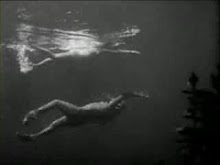 "From ""Creature from the Black Lagoon"""
