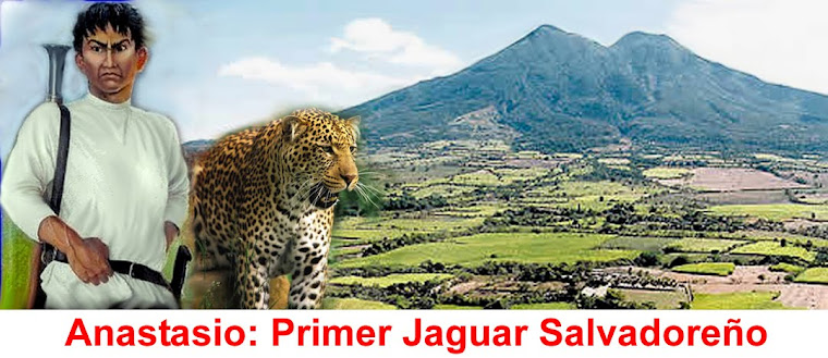 Anastasio Jaguar