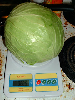 Cabbage on scale