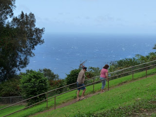 Expansive ocean views from Waipio Valley Lookout
