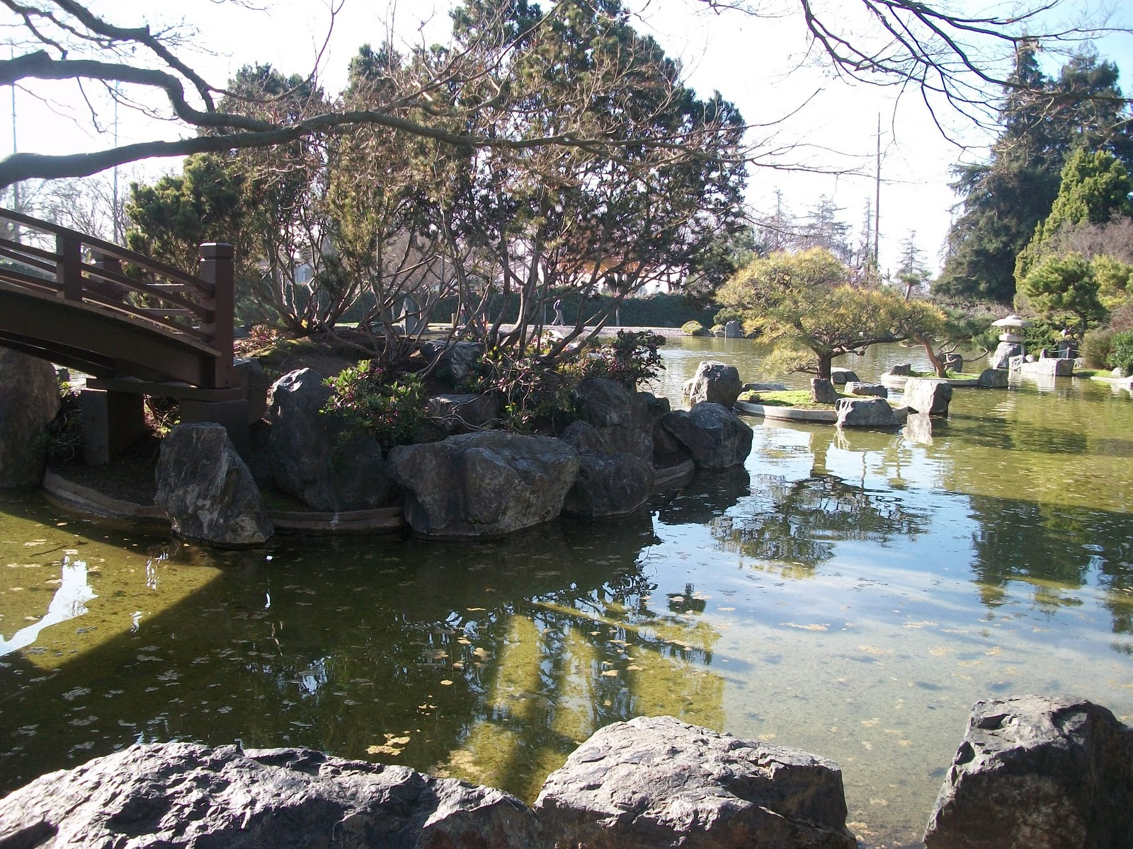 Dreamfairy inc happy hollow park and zoo japanese for Japanese friendship garden san jose koi fish