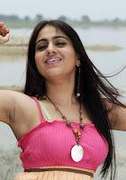 aksha south indian actress hot pics