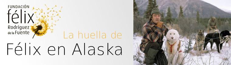 Félix en Alaska