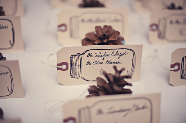 I love the pine cones too for a rustic winter wedding