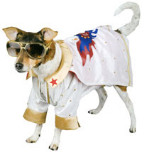 disfraz de elvis para perro
