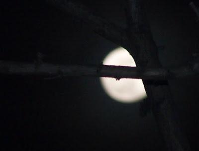 31.12.2009 - 20:10 civarı İstanbul'dan Ay...