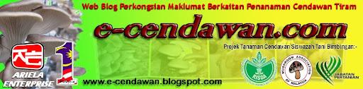 PROJEK TANAMAN CENDAWAN TIRAM MALAYSIA : e-cendawan.com