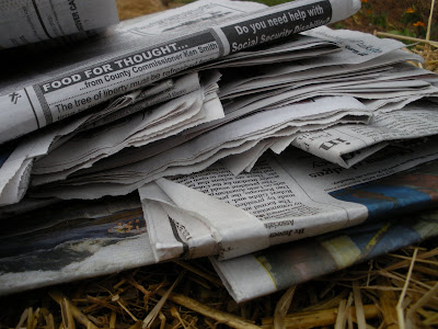 Newspapers Recycled in the Garden.