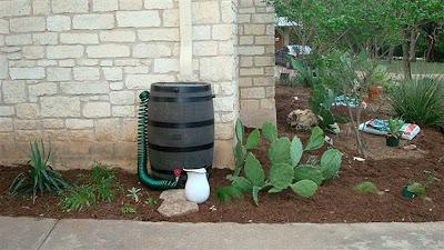 DivasoftheDirt,Mindy new rain barrel