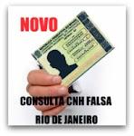 CONSULTA CNH FALSA RJ