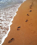 TRACING MY FAMILY'S FOOTSTEPS