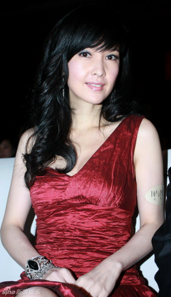 Vivian Chow Net Worth