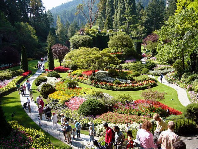 Hawaii travel butchart gardens in victoria - What time does victoria gardens open ...