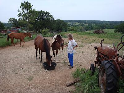 Rita's ponies