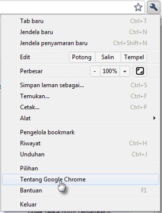 Update Google Chrome 8 Stabil dirilis offline installer