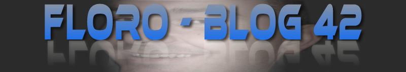 FLORO - BLOG 42