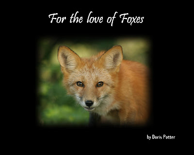 ... fox den which I then visited many times as the kits grew into beautiful ...