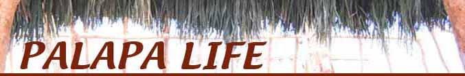 Palapa Life