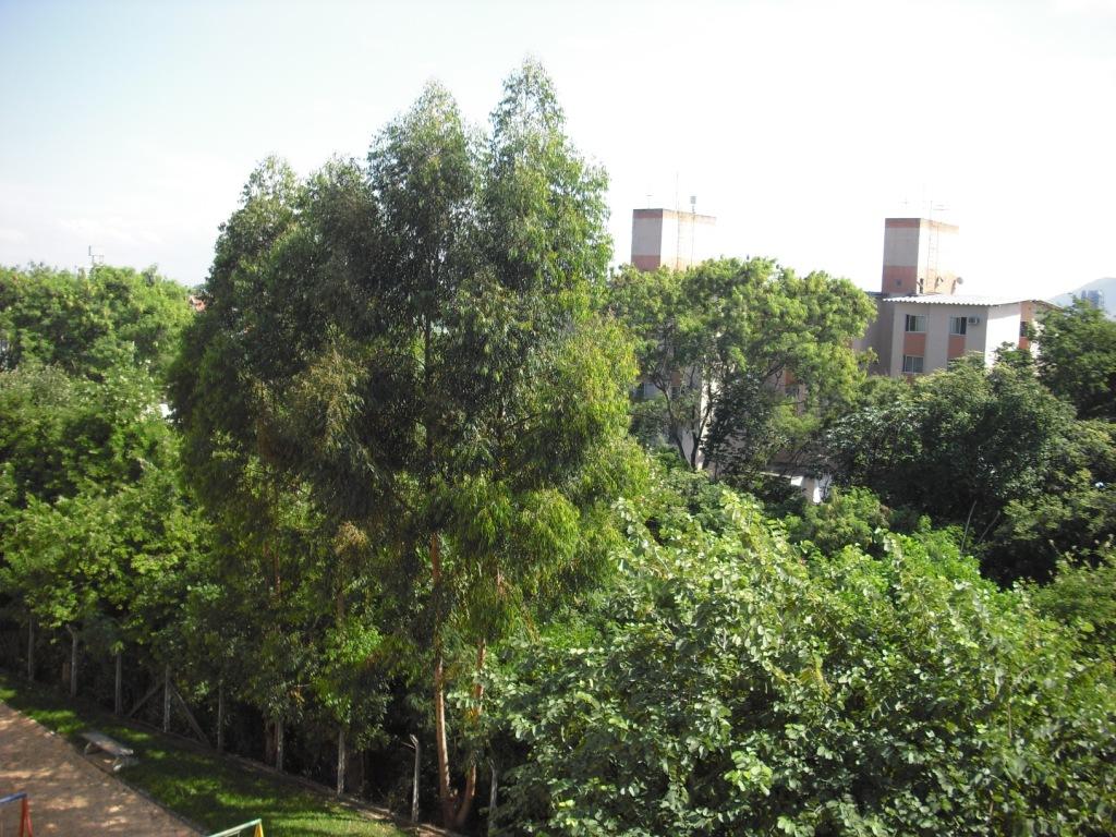 da janela da sala área de preservação do condomínio vista janela  #7B903B 1024 768