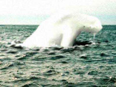antarctic humanoid 5 Ningen Makhluk Antartika Yang Menyerupai Manusia