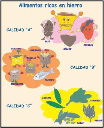 Hierro durante el embarazo - Alimentos que contengan hierro para embarazadas ...