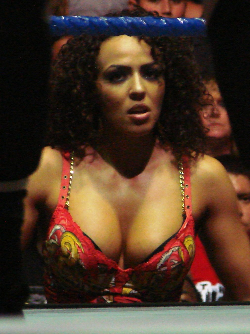 WWE Layla El Hot Picture