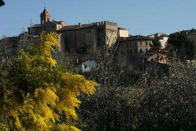 Ostra,scorcio Castello Menchetti,8 marzo