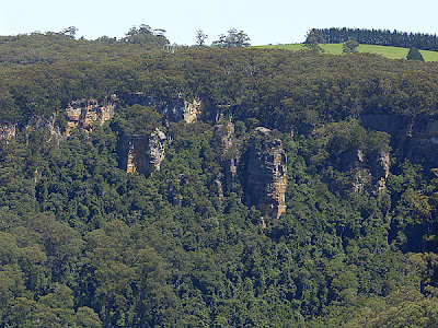 The Nature of Robertson: The Manning Lookout Bushwalk was great fun.