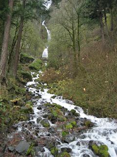 Wahkeena Falls - 242 Feet