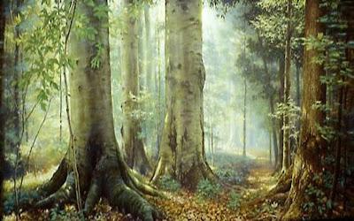 florestas+e+%C3%A1rvores A voz das árvores   Manuel Bandeira