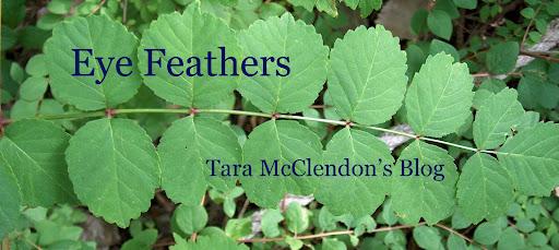 Tara McClendon