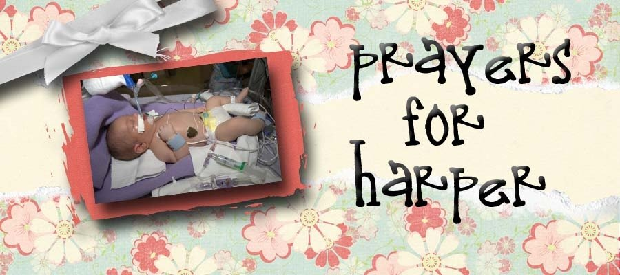 Pray for Harper
