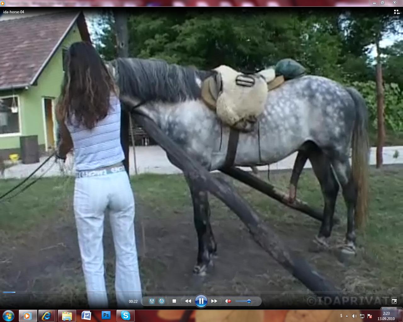 Описание: голая баба без комплексов на ферме, присев на колени отсасывает огромный стоячий член у коня.