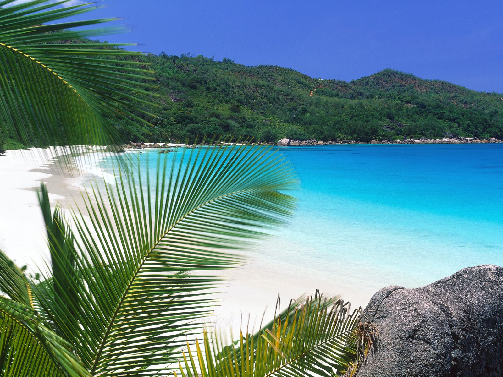 http://4.bp.blogspot.com/_6vQUmqm2JkQ/TTvsW72O_5I/AAAAAAAAHwk/nU40MRjTVHM/s1600/photos-of-Tropical-Retreat-Seychelles-pictures.jpg