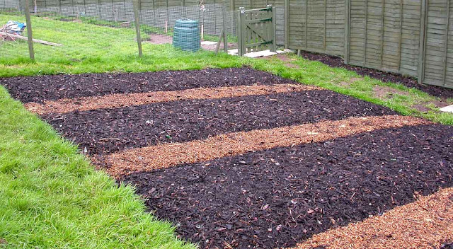 A lighter bark mulch is laid to mark the paths.