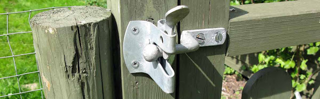 Galvanised gate latch.